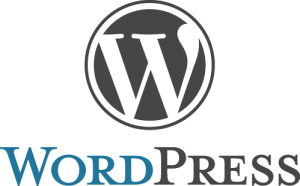 Wordpress CMS (Content Management System) for SEO